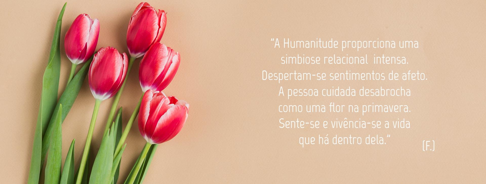 banner humanitude